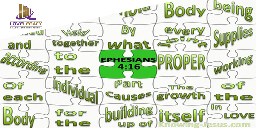 Ephesians 4-16 The Body Fitted And Held Together black copy